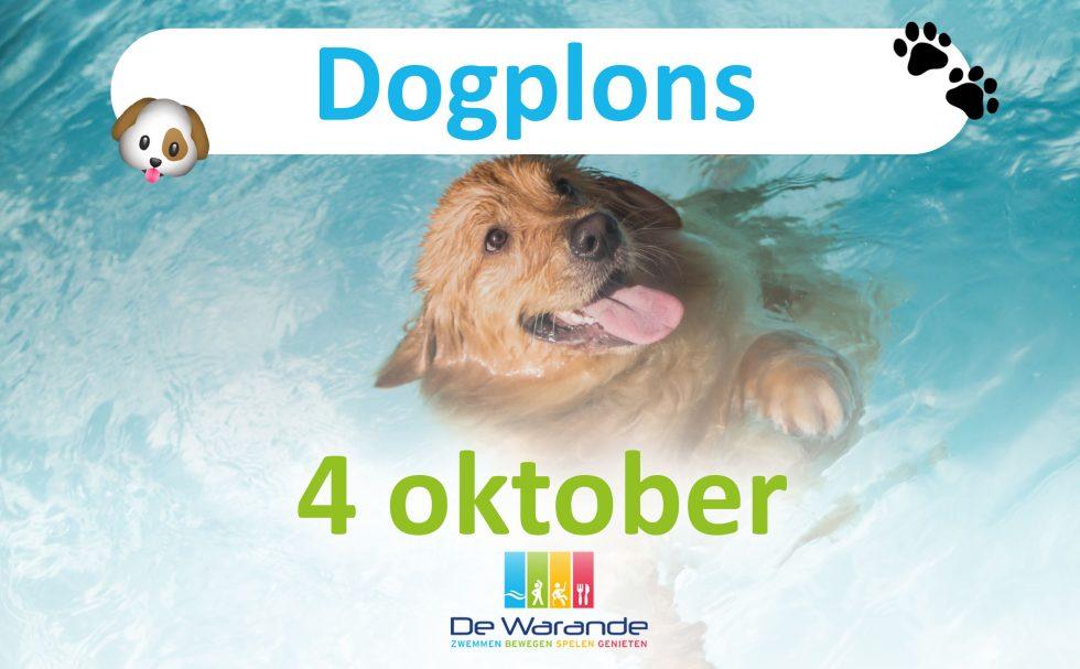 Vier dierendag bij De Warande met je trouwe viervoeter tijdens de Dogplons!